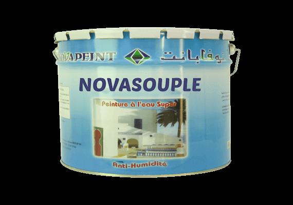 NOVAPEINT - Peinture acrylique pour mur exterieur